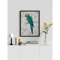 Tropical Macaw Poster