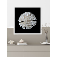 White Coral I Poster