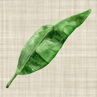 Green Leaf Art Print