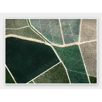 Field of Dreams Unframed Art Print
