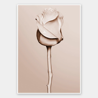 Rosewater Rolled Fine Art Print