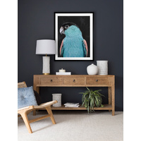 Koah Left Framed Art Print