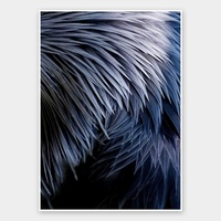 Plumage Rolled Fine Art Print