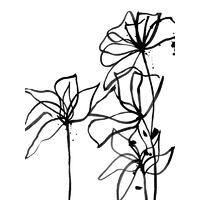 Ink Flowers I Poster