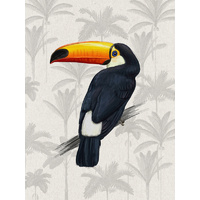 Tropical Toucan Poster